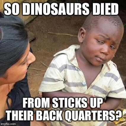 Third World Skeptical Kid Meme | SO DINOSAURS DIED FROM STICKS UP THEIR BACK QUARTERS? | image tagged in memes,third world skeptical kid | made w/ Imgflip meme maker