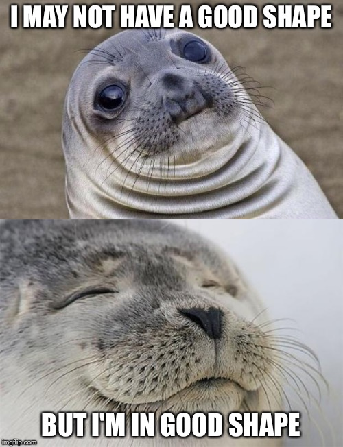 Self-Content Sealion | I MAY NOT HAVE A GOOD SHAPE BUT I'M IN GOOD SHAPE | image tagged in sealion | made w/ Imgflip meme maker