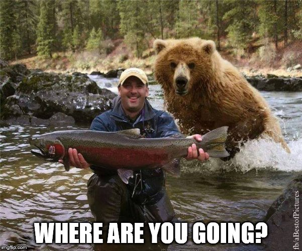 Fishing | WHERE ARE YOU GOING? | image tagged in fishing | made w/ Imgflip meme maker
