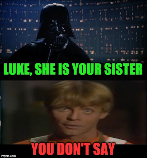 Star Wars No Meme | LUKE, SHE IS YOUR SISTER YOU DON'T SAY | image tagged in memes,star wars no | made w/ Imgflip meme maker