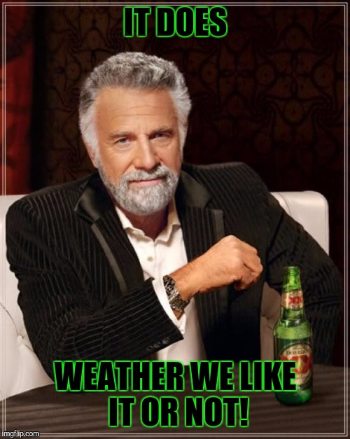 The Most Interesting Man In The World Meme | IT DOES WEATHER WE LIKE IT OR NOT! | image tagged in memes,the most interesting man in the world | made w/ Imgflip meme maker