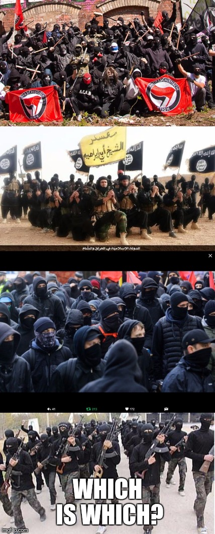 WHICH IS WHICH? | image tagged in memes,isis,antifa | made w/ Imgflip meme maker