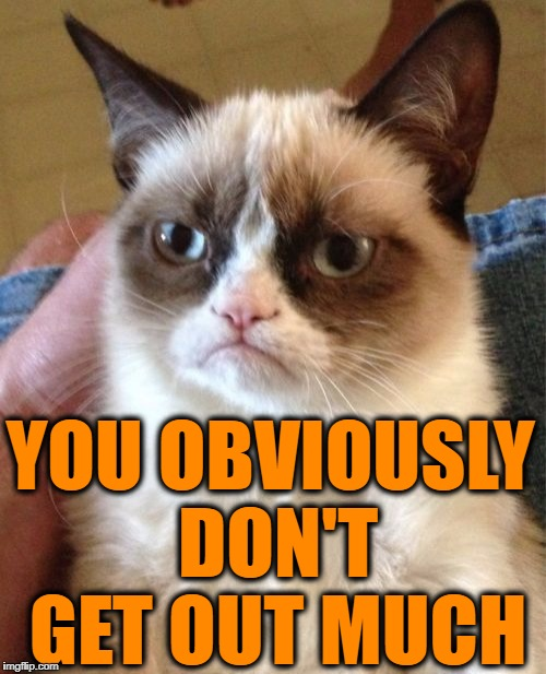 Grumpy Cat Meme | YOU OBVIOUSLY DON'T GET OUT MUCH | image tagged in memes,grumpy cat | made w/ Imgflip meme maker