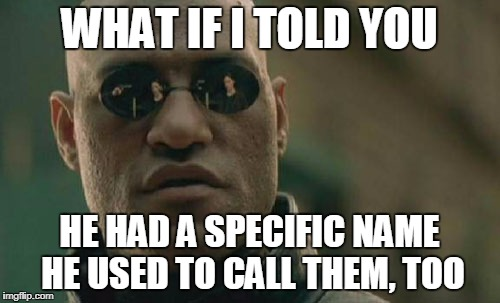 WHAT IF I TOLD YOU HE HAD A SPECIFIC NAME HE USED TO CALL THEM, TOO | image tagged in memes,matrix morpheus | made w/ Imgflip meme maker