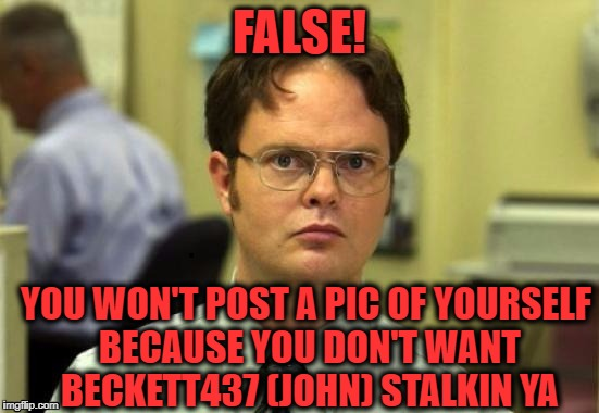 dwight | FALSE! YOU WON'T POST A PIC OF YOURSELF BECAUSE YOU DON'T WANT BECKETT437 (JOHN) STALKIN YA | image tagged in dwight | made w/ Imgflip meme maker