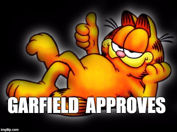 Garfield approves | GARFIELD  APPROVES | image tagged in garfield thumbs up | made w/ Imgflip meme maker