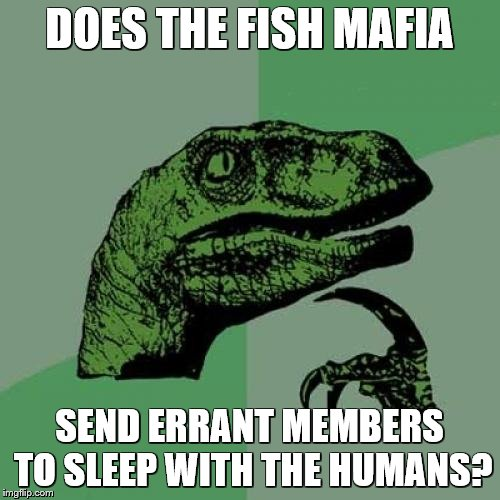 Philosoraptor Meme | DOES THE FISH MAFIA SEND ERRANT MEMBERS TO SLEEP WITH THE HUMANS? | image tagged in memes,philosoraptor | made w/ Imgflip meme maker