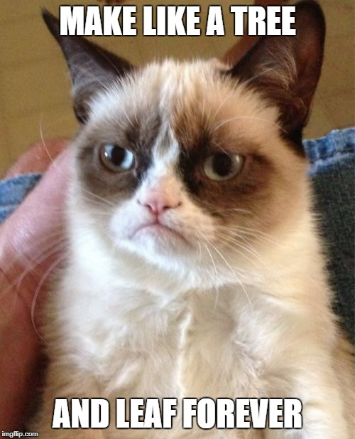 Grumpy Cat Meme | MAKE LIKE A TREE AND LEAF FOREVER | image tagged in memes,grumpy cat | made w/ Imgflip meme maker