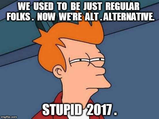 Fry Alt.Alternative | WE  USED  TO  BE  JUST  REGULAR  FOLKS .  NOW  WE'RE  ALT . ALTERNATIVE. STUPID  2017 . | image tagged in memes,futurama fry,fry,alt | made w/ Imgflip meme maker