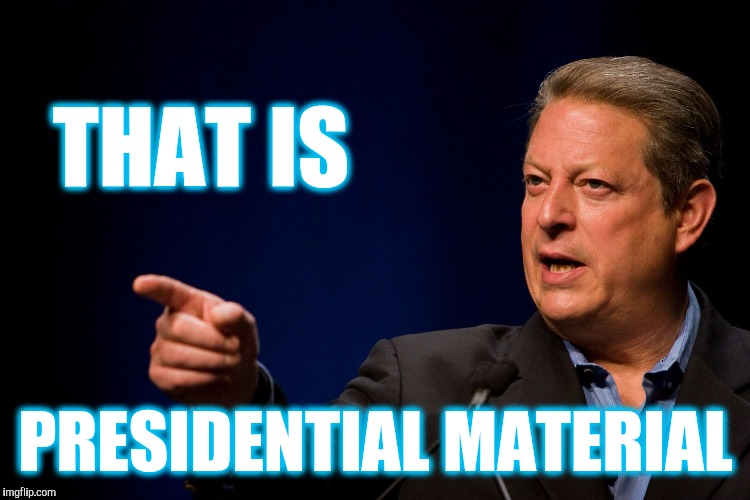 Memes, Al Gore | THAT IS PRESIDENTIAL MATERIAL | image tagged in memes al gore | made w/ Imgflip meme maker