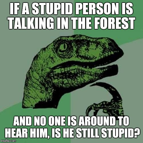 Philosoraptor Meme | IF A STUPID PERSON IS TALKING IN THE FOREST AND NO ONE IS AROUND TO HEAR HIM, IS HE STILL STUPID? | image tagged in memes,philosoraptor,funny,stupid people | made w/ Imgflip meme maker