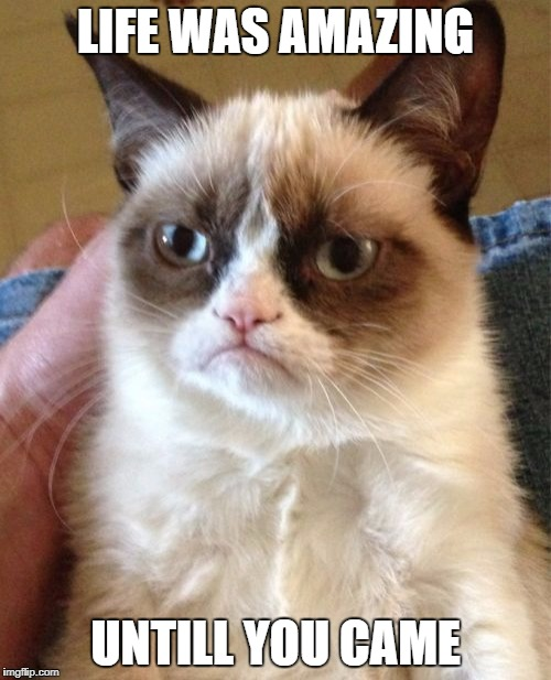 Better go away | LIFE WAS AMAZING UNTILL YOU CAME | image tagged in memes,grumpy cat | made w/ Imgflip meme maker