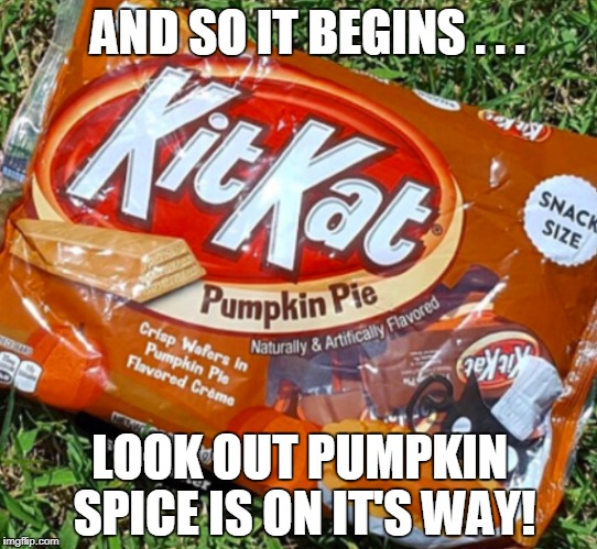 I'm not ready for this! | AND SO IT BEGINS . . . LOOK OUT PUMPKIN SPICE IS ON IT'S WAY! | image tagged in fall,pumpkin spice,not today | made w/ Imgflip meme maker