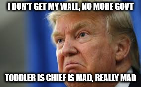 Build that wall | I DON'T GET MY WALL, NO MORE GOVT TODDLER IS CHIEF IS MAD, REALLY MAD | image tagged in toddler in chief trump,potus,trump,wall,build a wall,usa | made w/ Imgflip meme maker