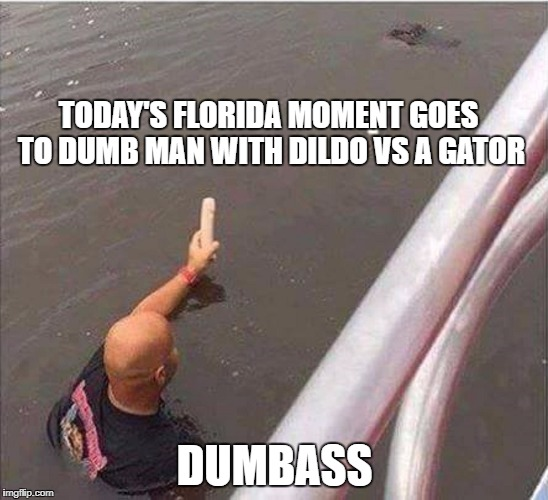 TODAY'S FLORIDA MOMENT GOES TO DUMB MAN WITH D**DO VS A GATOR DUMBASS | image tagged in dumbass,vs,alligator | made w/ Imgflip meme maker