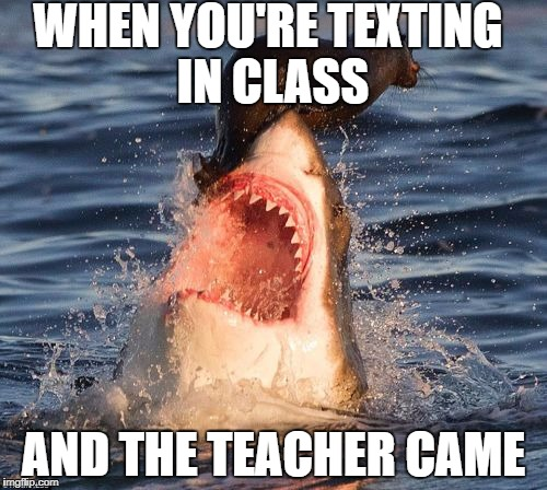 RIP | WHEN YOU'RE TEXTING IN CLASS AND THE TEACHER CAME | image tagged in memes,travelonshark,teacher,school,text in class | made w/ Imgflip meme maker