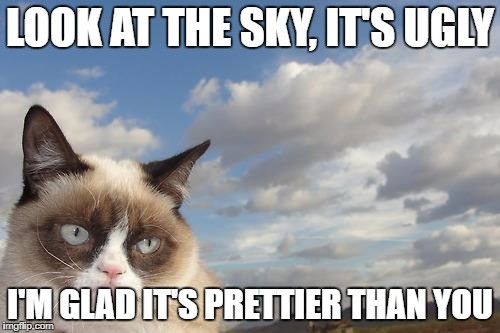 Good thing! | LOOK AT THE SKY, IT'S UGLY I'M GLAD IT'S PRETTIER THAN YOU | image tagged in memes,grumpy cat sky,grumpy cat,ugly,pretty | made w/ Imgflip meme maker