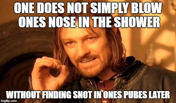 Snotty Pubes | ONE DOES NOT SIMPLY BLOW ONES NOSE IN THE SHOWER WITHOUT FINDING SNOT IN ONES PUBES LATER | image tagged in memes,one does not simply,snot,pubes,gross | made w/ Imgflip meme maker
