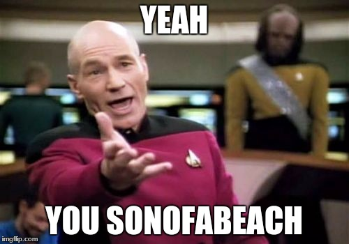 Picard Wtf Meme | YEAH YOU SONOFABEACH | image tagged in memes,picard wtf | made w/ Imgflip meme maker