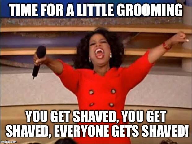 Oprah You Get A Meme | TIME FOR A LITTLE GROOMING YOU GET SHAVED, YOU GET SHAVED, EVERYONE GETS SHAVED! | image tagged in memes,oprah you get a | made w/ Imgflip meme maker