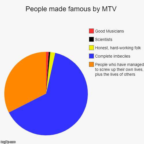 The first three slices may be a bit too large | People made famous by MTV | People who have managed to screw up their own lives, plus the lives of others, Complete imbeciles, Honest, hard- | image tagged in funny,pie charts,mtv | made w/ Imgflip pie chart maker