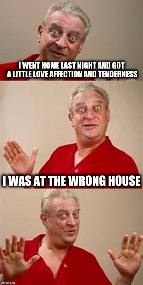 bad pun Dangerfield  | I WENT HOME LAST NIGHT AND GOT A LITTLE LOVE AFFECTION AND TENDERNESS I WAS AT THE WRONG HOUSE | image tagged in bad pun dangerfield | made w/ Imgflip meme maker