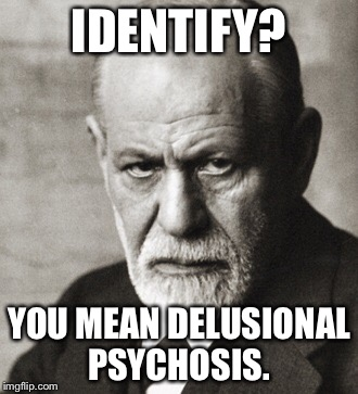 IDENTIFY? YOU MEAN DELUSIONAL PSYCHOSIS. | made w/ Imgflip meme maker