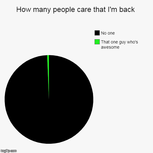 You know who you are bro! ;D | How many people care that I'm back | That one guy who's awesome, No one | image tagged in funny,pie charts | made w/ Imgflip pie chart maker