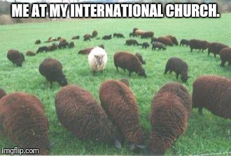 ME AT MY INTERNATIONAL CHURCH. | image tagged in church | made w/ Imgflip meme maker
