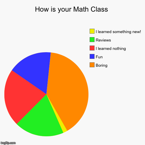 Your Math Class | How is your Math Class | Boring, Fun, I learned nothing, Reviews, I learned something new! | image tagged in funny,pie charts,math | made w/ Imgflip pie chart maker