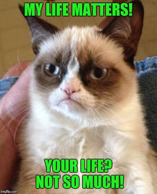 What they're REALLY saying! | MY LIFE MATTERS! YOUR LIFE? NOT SO MUCH! | image tagged in memes,grumpy cat,blm,black lives matter | made w/ Imgflip meme maker