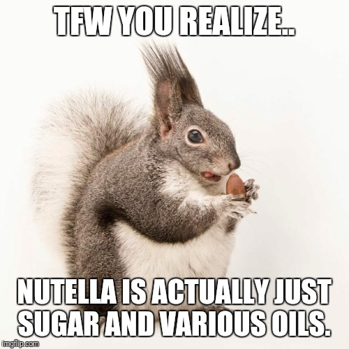 Nutella probs | TFW YOU REALIZE.. NUTELLA IS ACTUALLY JUST SUGAR AND VARIOUS OILS. | image tagged in nuts,nutella,diets,dieting,squirrels,fat | made w/ Imgflip meme maker