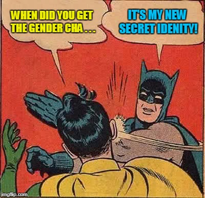 Batman Slapping Robin Meme | WHEN DID YOU GET THE GENDER CHA . . . IT'S MY NEW SECRET IDENITY! | image tagged in memes,batman slapping robin | made w/ Imgflip meme maker