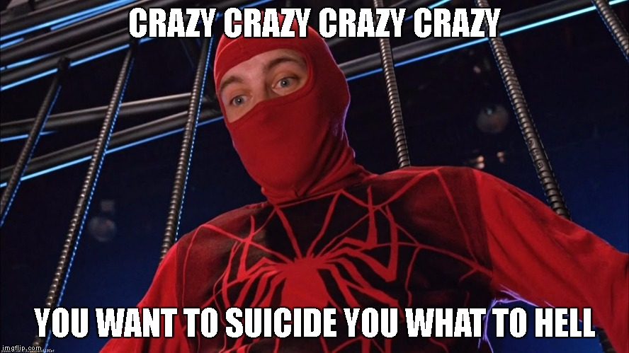 fake spiderman | CRAZY CRAZY CRAZY CRAZY YOU WANT TO SUICIDE YOU WHAT TO HELL | image tagged in fall,crazy,spiderman,backflip,superheros,memes | made w/ Imgflip meme maker
