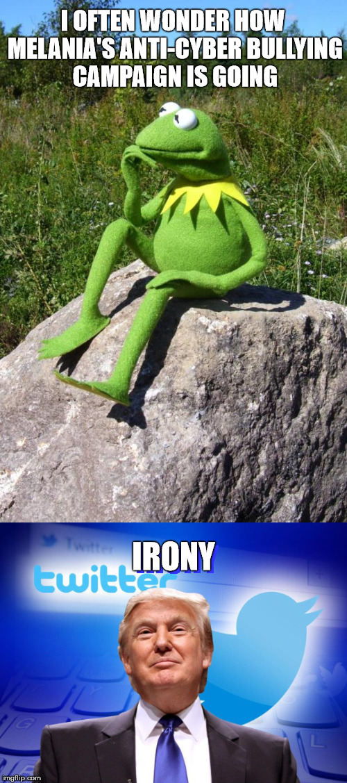 Isn't it ironic? | I OFTEN WONDER HOW MELANIA'S ANTI-CYBER BULLYING CAMPAIGN IS GOING IRONY IRONY | image tagged in kermit the frog,donald trump,irony,cyberbullying,bully | made w/ Imgflip meme maker