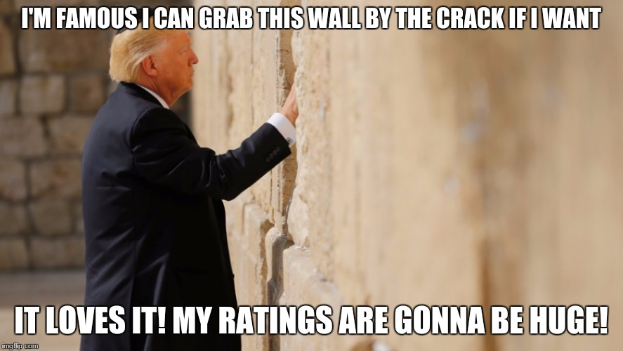 I'M FAMOUS I CAN GRAB THIS WALL BY THE CRACK IF I WANT IT LOVES IT! MY RATINGS ARE GONNA BE HUGE! | made w/ Imgflip meme maker