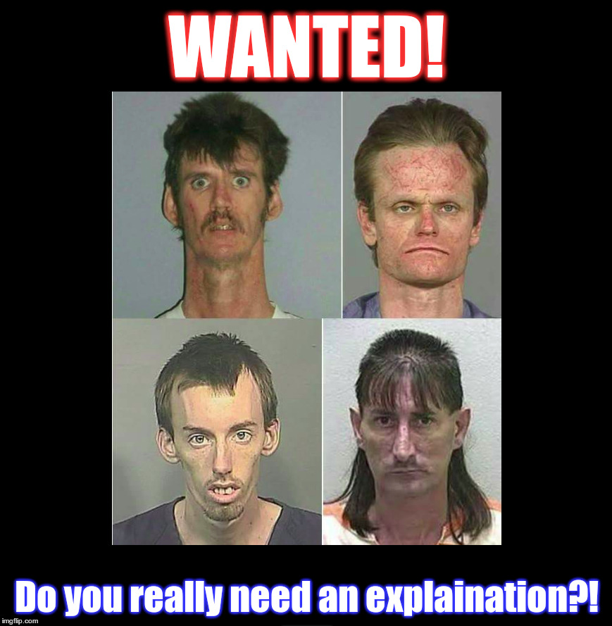 Wanted Poster |  WANTED! Do you really need an explaination?! | image tagged in wanted,wanted dead or alive | made w/ Imgflip meme maker