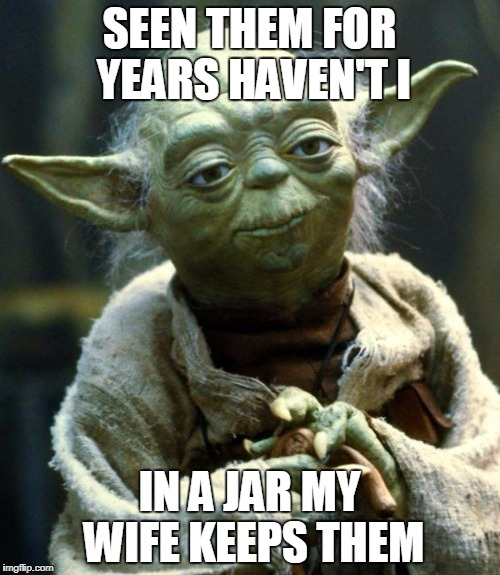 Star Wars Yoda Meme | SEEN THEM FOR YEARS HAVEN'T I IN A JAR MY WIFE KEEPS THEM | image tagged in memes,star wars yoda | made w/ Imgflip meme maker