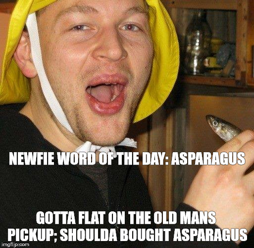 NEWFIE WORD OF THE DAY: ASPARAGUS GOTTA FLAT ON THE OLD MANS PICKUP; SHOULDA BOUGHT ASPARAGUS | image tagged in newfie word of the day | made w/ Imgflip meme maker