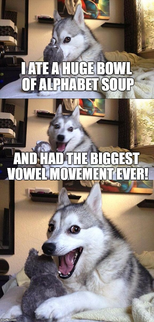 Bad Pun Dog Meme | I ATE A HUGE BOWL OF ALPHABET SOUP AND HAD THE BIGGEST VOWEL MOVEMENT EVER! | image tagged in memes,bad pun dog | made w/ Imgflip meme maker
