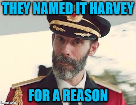 Captain Obvious | THEY NAMED IT HARVEY FOR A REASON | image tagged in captain obvious | made w/ Imgflip meme maker
