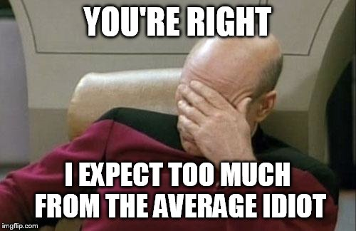 Captain Picard Facepalm Meme | YOU'RE RIGHT I EXPECT TOO MUCH FROM THE AVERAGE IDIOT | image tagged in memes,captain picard facepalm | made w/ Imgflip meme maker