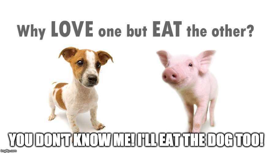 Jut kidding. Dogs aren't made of bacon. | YOU DON'T KNOW ME! I'LL EAT THE DOG TOO! | image tagged in mmm bacon,peta,bacon,iwanttobebacon,iwanttobebaconcom | made w/ Imgflip meme maker