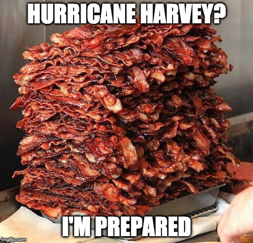 I'm right in the path of the Hurricane. I will submit 3 a day until I lose power. So long and thanks for all the fish! | HURRICANE HARVEY? I'M PREPARED | image tagged in bacon,hurricane,iwanttobebacon,iwanttobebaconcom,hurricane harvey | made w/ Imgflip meme maker