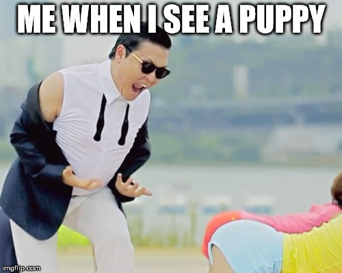Puppy | ME WHEN I SEE A PUPPY | image tagged in psy | made w/ Imgflip meme maker