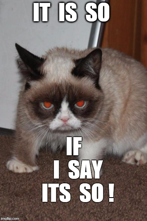 Grumpier Cat | IT  IS  SO IF    I  SAY  ITS  SO ! | image tagged in grumpy cat red eyes,it is so,i say so | made w/ Imgflip meme maker