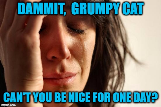 First World Problems Meme | DAMMIT,  GRUMPY CAT CAN'T YOU BE NICE FOR ONE DAY? | image tagged in memes,first world problems | made w/ Imgflip meme maker