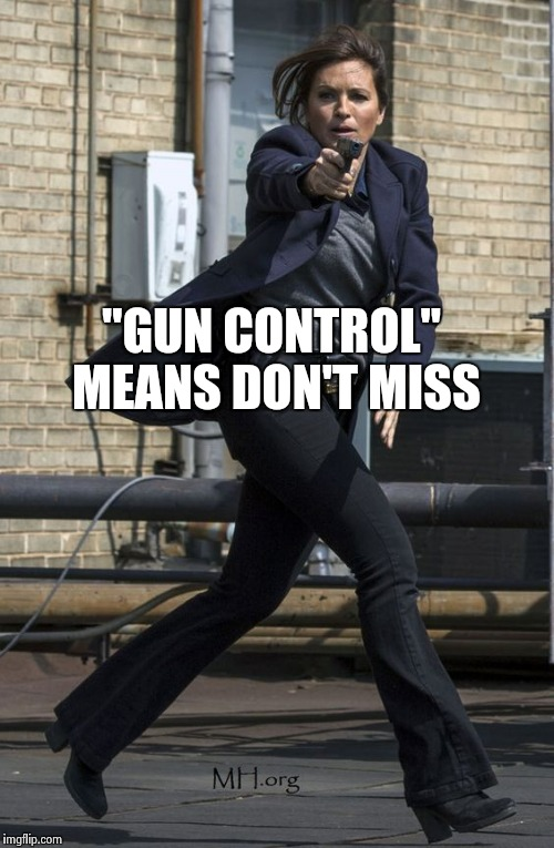 """GUN CONTROL"" MEANS DON'T MISS 