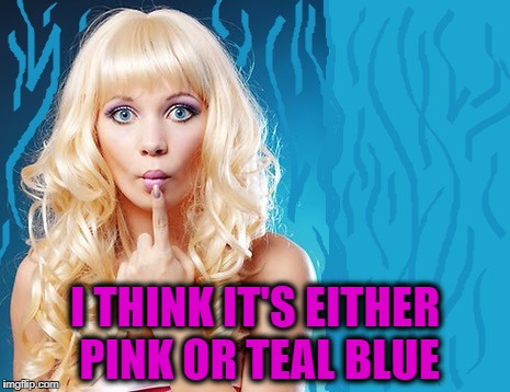 ditzy blonde | I THINK IT'S EITHER PINK OR TEAL BLUE | image tagged in ditzy blonde | made w/ Imgflip meme maker