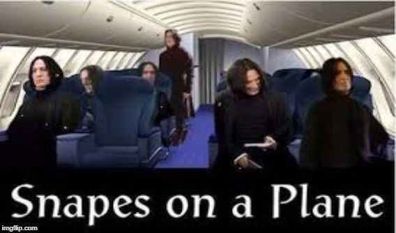 I'm tired of these MOTHERFUCKING Snapes, on this MOTHERFUCKING Plane! | image tagged in fegvnsxal | made w/ Imgflip meme maker